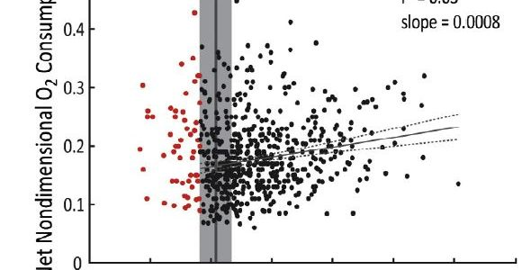 Scatter plot illustrating that there is not a significant correlation between minimum knee flexion angle during stance and oxygen consumption.